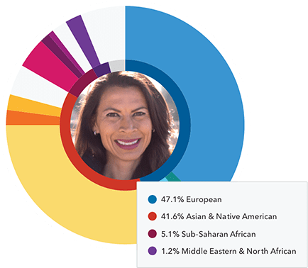 ancestry pie chart with regions